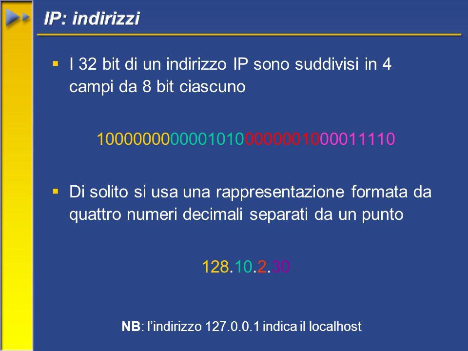 I 32 bit di un indirizzo IP sono suddivisi in 4 campi da 8 bit ciascuno 10000000000010100000001000011110 Di solito si usa una rappresentazione formata da quattro numeri decimali separati da un punto 128.10.2.30 NB: lindirizzo 127.0.0.1 indica il localhost