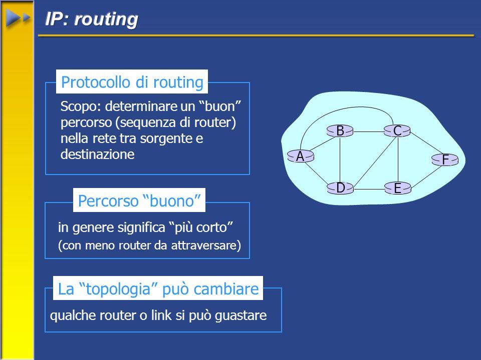 Scopo: determinare un buon percorso (sequenza di router) nella rete tra sorgente e destinazione Protocollo di routing A E D CB F in genere significa più corto (con meno router da attraversare) Percorso buono qualche router o link si può guastare La topologia può cambiare