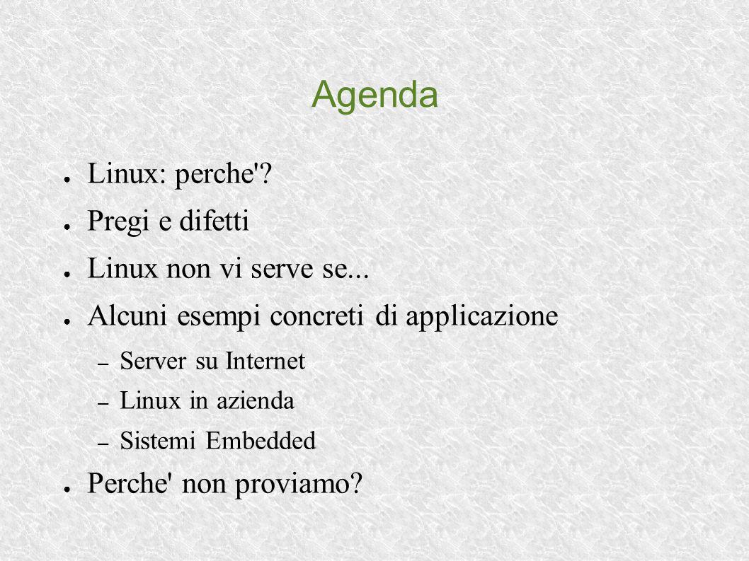 Agenda Linux: perche'? Pregi e difetti Linux non vi serve se... Alcuni esempi concreti di applicazione – Server su Internet – Linux in azienda – Siste