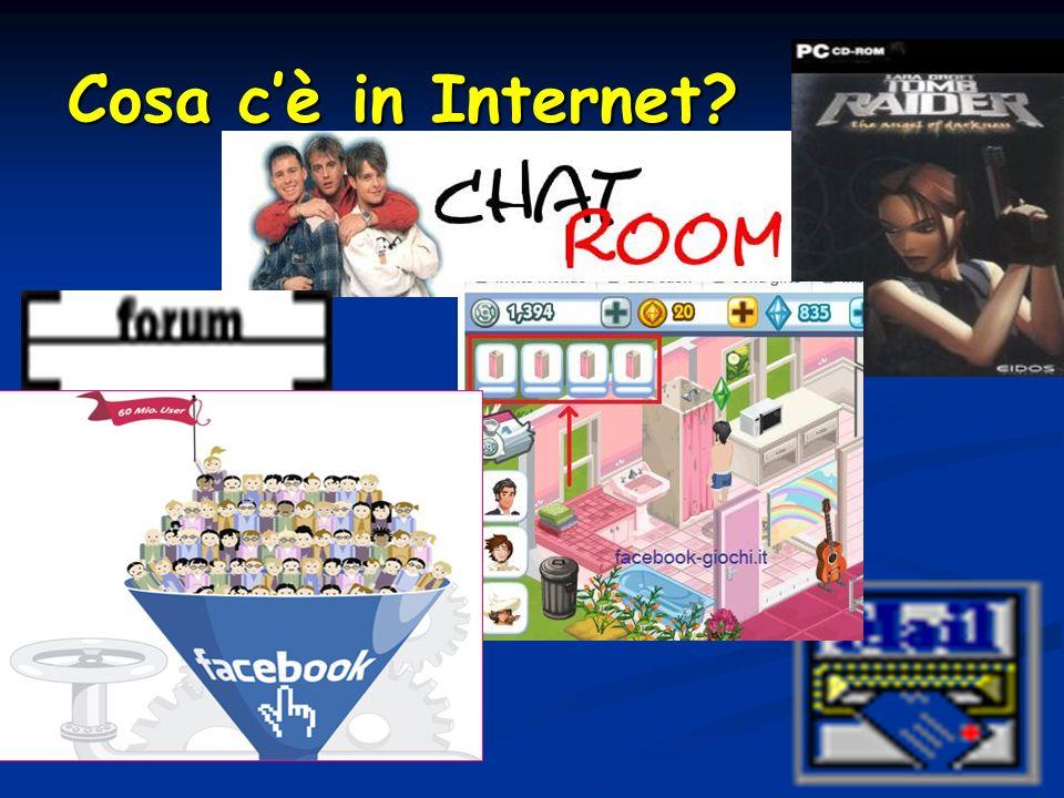 Cosa cè in Internet?