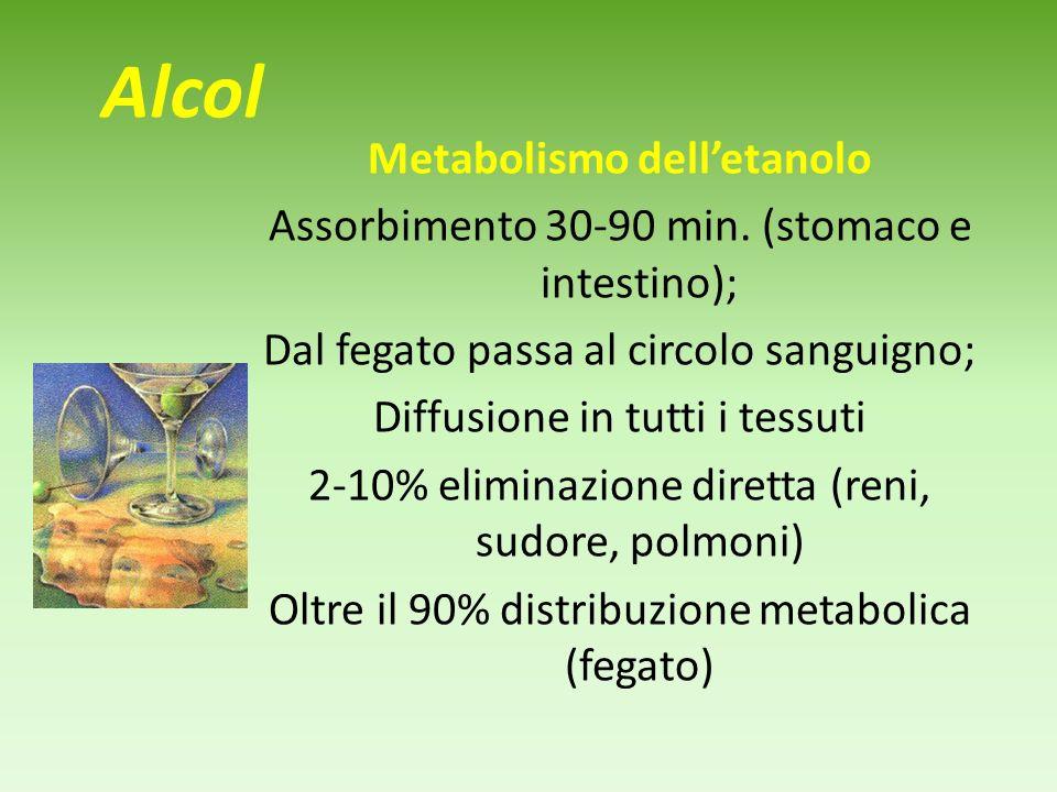 Alcol Metabolismo delletanolo Assorbimento 30-90 min.