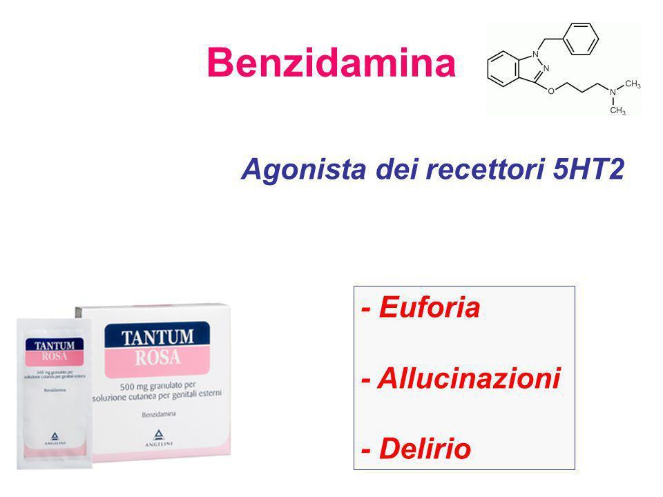 Benzidamina Agonista dei recettori 5HT2 - Euforia - Allucinazioni - Delirio