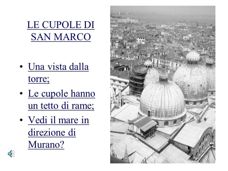 VISTA GENERALE DI VENEZIA Una bella vista dalla torre o campanile; I tetti rossi sono caratteristici di molte citta italiane;I tetti rossi sono caratt
