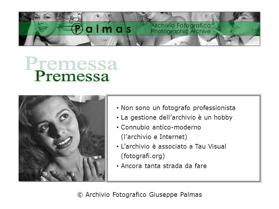 Sophia Loren Non sono un fotografo professionista La gestione dellarchivio è un hobby Connubio antico-moderno (larchivio e Internet) Larchivio è associato a Tau Visual (fotografi.org) Ancora tanta strada da fare © Archivio Fotografico Giuseppe Palmas