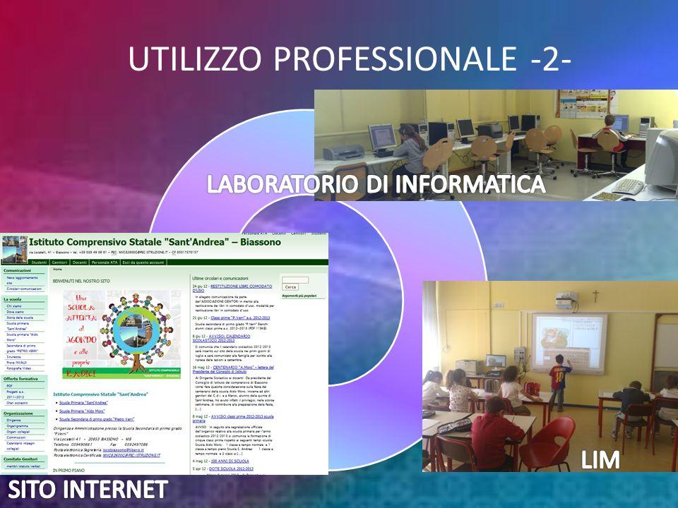 UTILIZZO PROFESSIONALE -2-