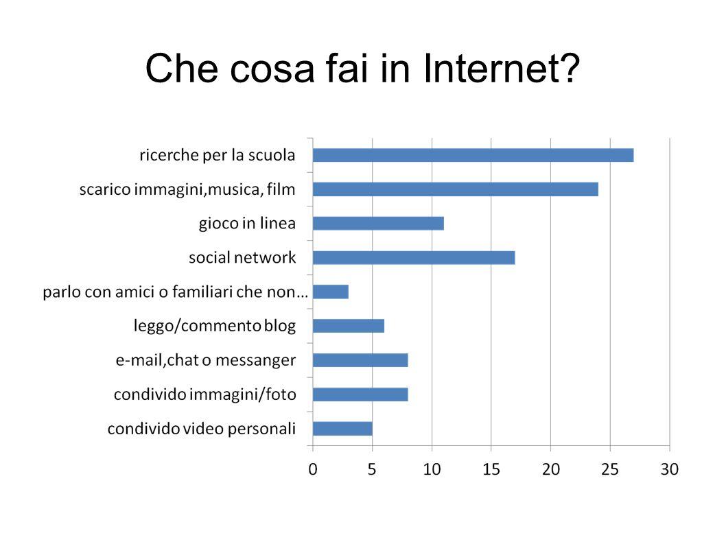Che cosa fai in Internet