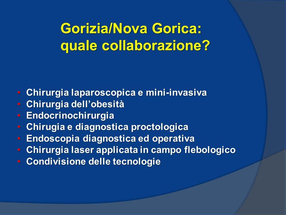Gorizia/Nova Gorica: quale collaborazione.