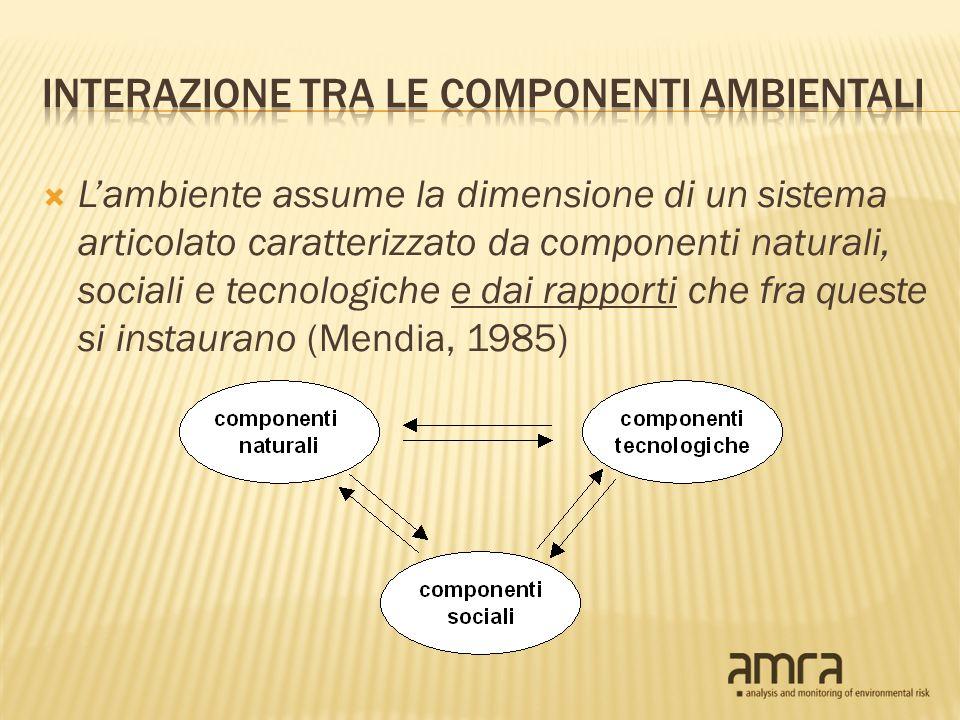 Lambiente assume la dimensione di un sistema articolato caratterizzato da componenti naturali, sociali e tecnologiche e dai rapporti che fra queste si