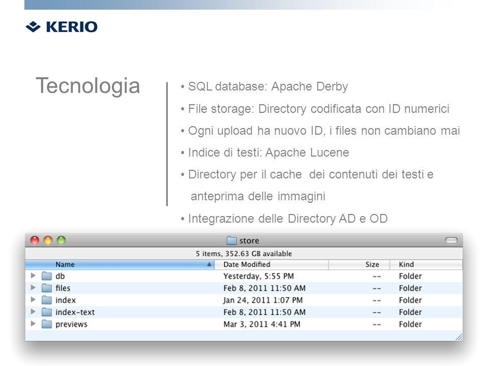 SQL database: Apache Derby File storage: Directory codificata con ID numerici Ogni upload ha nuovo ID, i files non cambiano mai Indice di testi: Apach