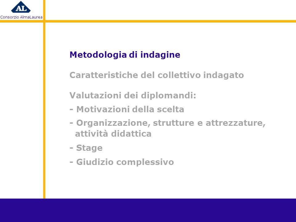 Consorzio AlmaLaurea D : Il piano formativo del master prevedeva uno stage.