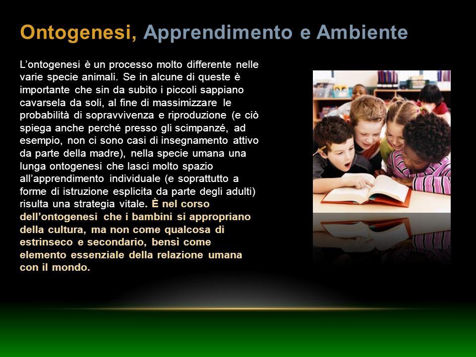 Ontogenesi, Apprendimento e Ambiente Lontogenesi è un processo molto differente nelle varie specie animali. Se in alcune di queste è importante che si