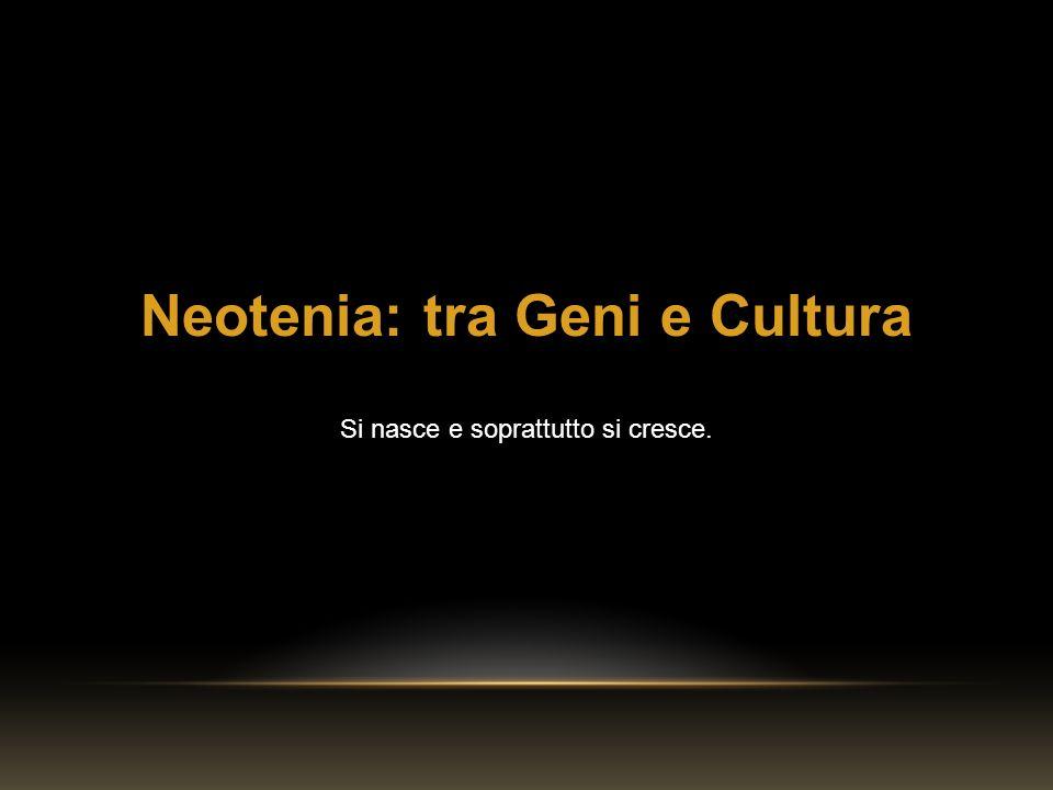 Neotenia: tra Geni e Cultura Si nasce e soprattutto si cresce.