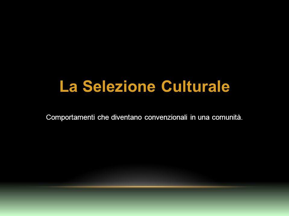 La Selezione Culturale Comportamenti che diventano convenzionali in una comunità.