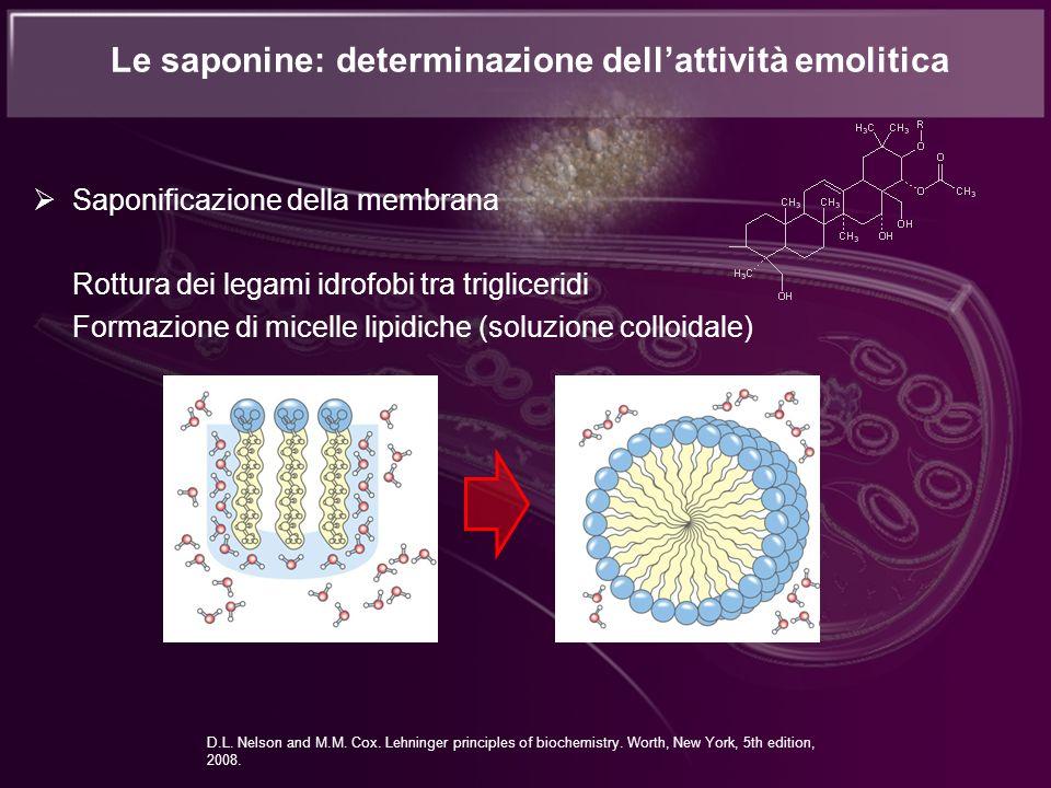 Saponificazione della membrana Rottura dei legami idrofobi tra trigliceridi Formazione di micelle lipidiche (soluzione colloidale) D.L. Nelson and M.M
