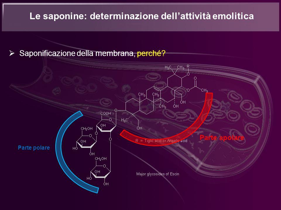 Le saponine: determinazione dellattività emolitica Saponificazione della membrana, perché? Parte polare Parte apolare