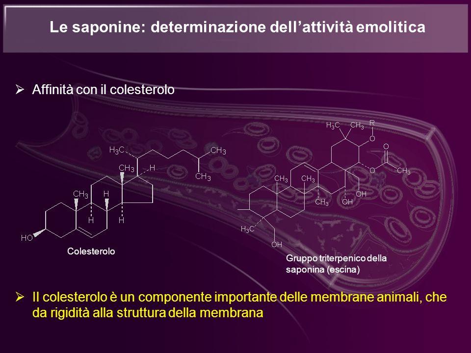 Le saponine: determinazione dellattività emolitica Affinità con il colesterolo Il colesterolo è un componente importante delle membrane animali, che d