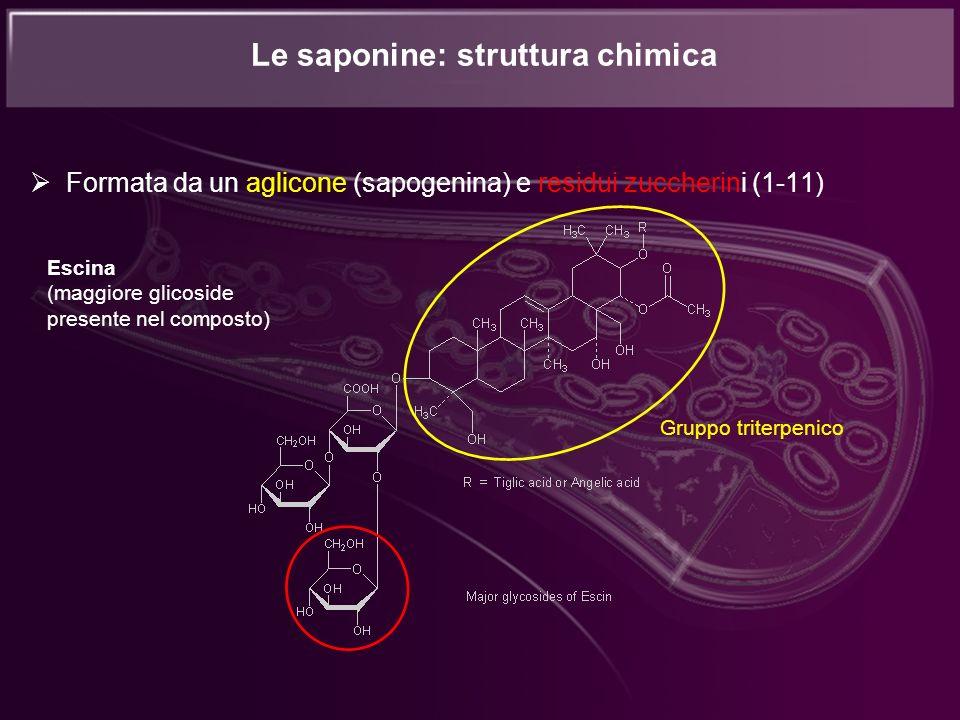Formata da un aglicone (sapogenina) e residui zuccherini (1-11) Le saponine: struttura chimica Escina (maggiore glicoside presente nel composto) Grupp