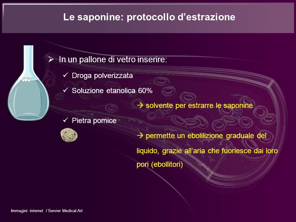 In un pallone di vetro inserire: Droga polverizzata Soluzione etanolica 60% solvente per estrarre le saponine Pietra pomice permette un ebolilizione g