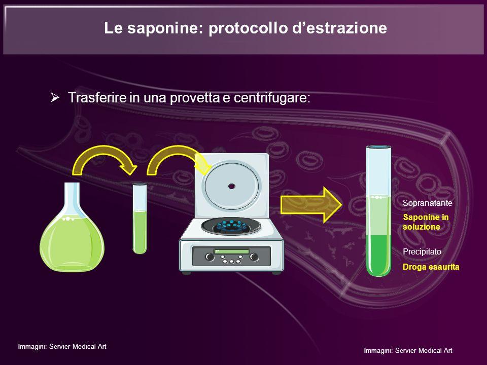 Trasferire in una provetta e centrifugare: Le saponine: protocollo destrazione Immagini: Servier Medical Art Sopranatante Precipitato Saponine in solu
