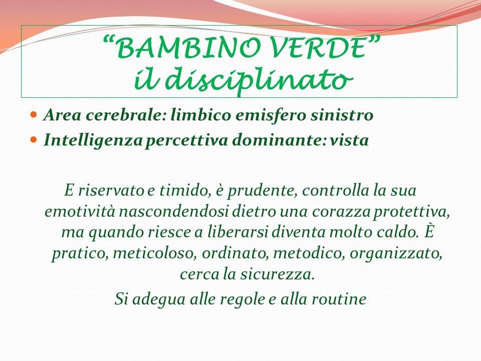 BAMBINO VERDE il disciplinato Area cerebrale: limbico emisfero sinistro Intelligenza percettiva dominante: vista E riservato e timido, è prudente, con