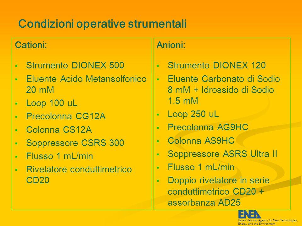 Italian National Agency for New Technologies, Energy and the Environment Determinazione quali/quantitativa Cationi Bianco (quarzo PALL) Campione 8 Luglio 09 Rep.