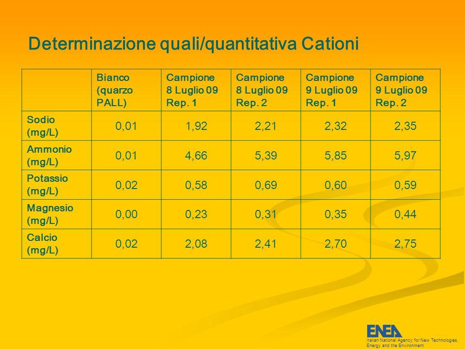 Italian National Agency for New Technologies, Energy and the Environment Determinazione quali/quantitativa Anioni Bianco (quarzo PALL) Campione 8 Luglio 09 Rep.