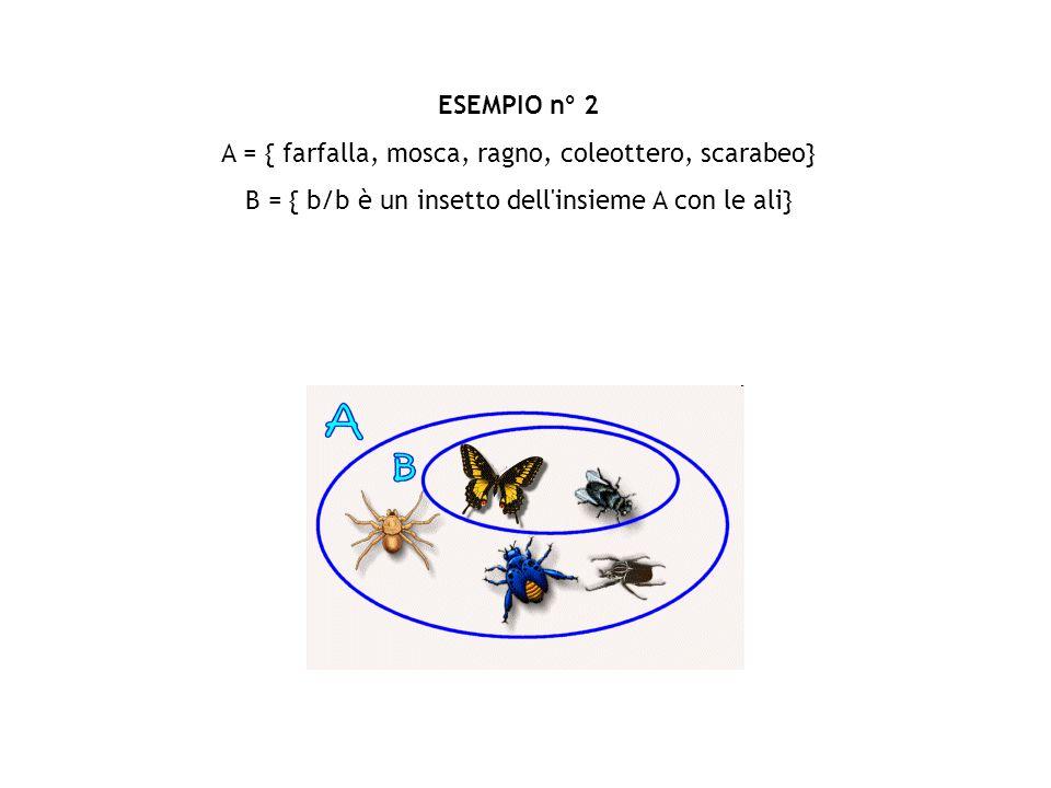 ESEMPIO n° 2 A = { farfalla, mosca, ragno, coleottero, scarabeo} B = { b/b è un insetto dell'insieme A con le ali}