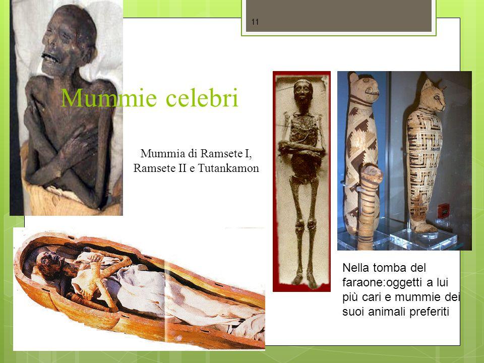 Mummie celebri 11 Mummia di Ramsete I, Ramsete II e Tutankamon Nella tomba del faraone:oggetti a lui più cari e mummie dei suoi animali preferiti