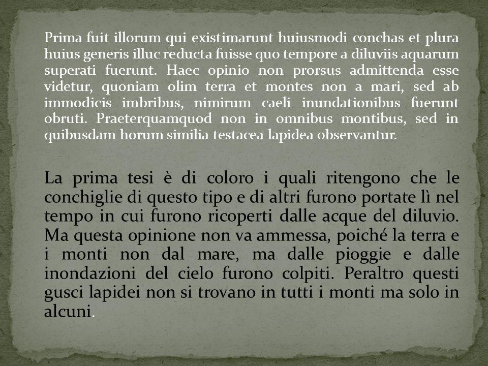 Prima fuit illorum qui existimarunt huiusmodi conchas et plura huius generis illuc reducta fuisse quo tempore a diluviis aquarum superati fuerunt.