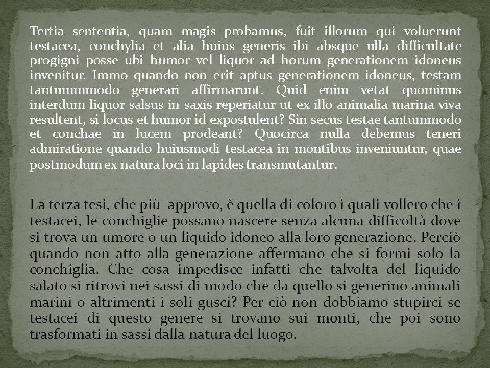 Tertia sententia, quam magis probamus, fuit illorum qui voluerunt testacea, conchylia et alia huius generis ibi absque ulla difficultate progigni posse ubi humor vel liquor ad horum generationem idoneus invenitur.