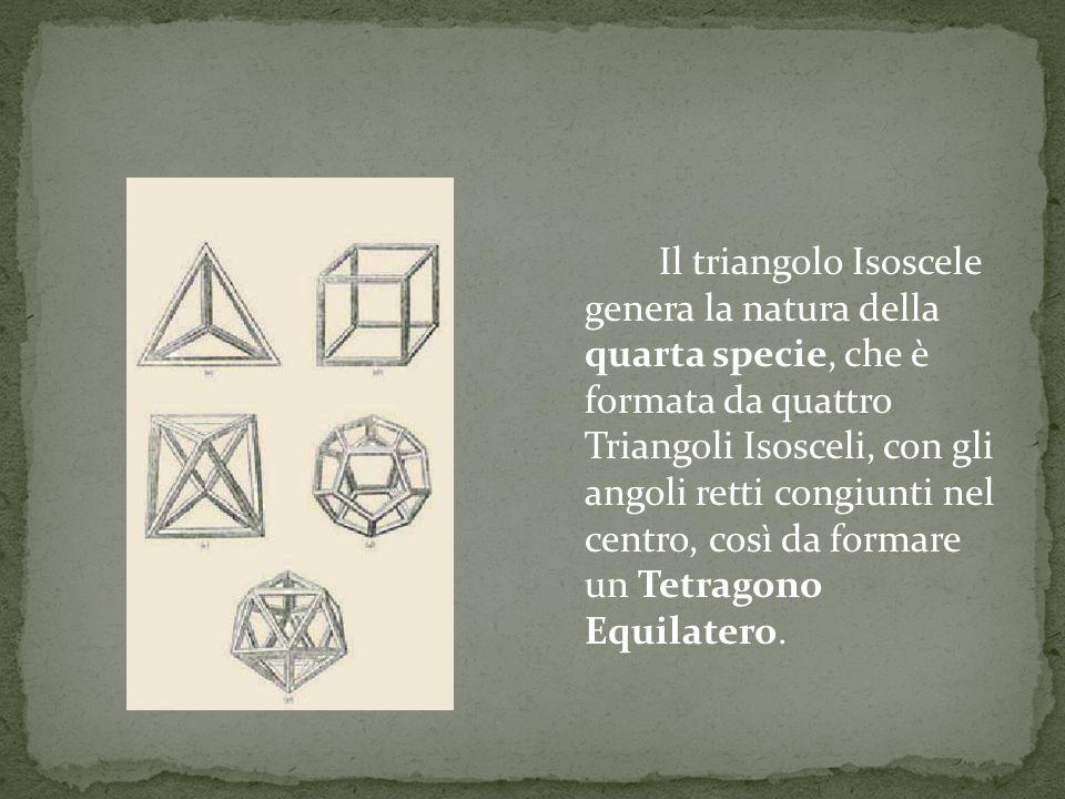 Il triangolo Isoscele genera la natura della quarta specie, che è formata da quattro Triangoli Isosceli, con gli angoli retti congiunti nel centro, co