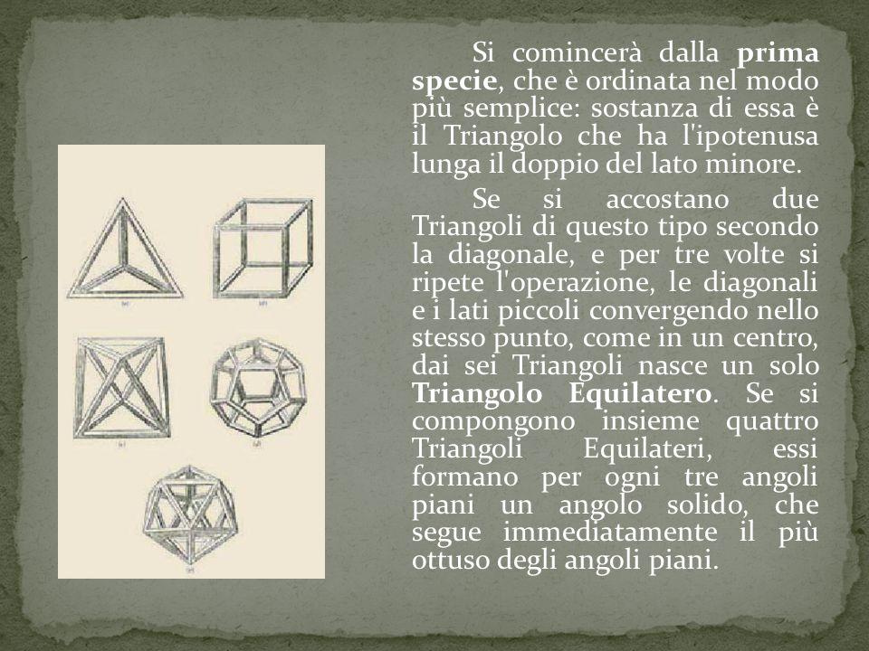Si comincerà dalla prima specie, che è ordinata nel modo più semplice: sostanza di essa è il Triangolo che ha l ipotenusa lunga il doppio del lato minore.