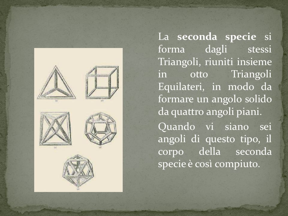La terza specie è formata da centoventi Triangoli connessi insieme, da dodici angoli solidi, compresi ciascuno da cinque Triangoli Equilateri piani e ha per base venti Triangoli Equilateri