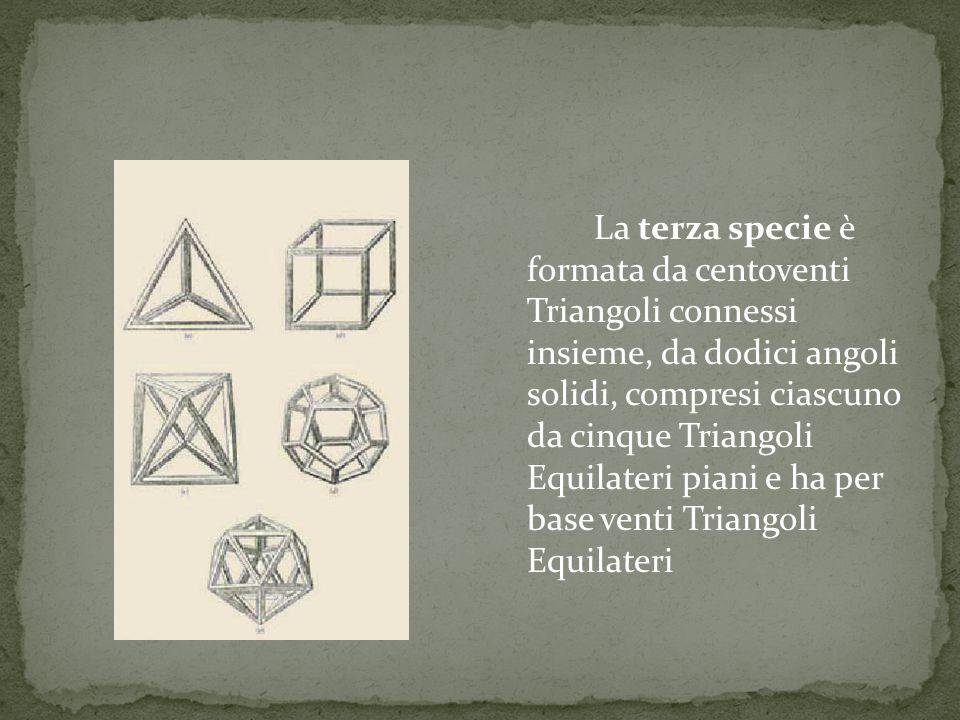 La terza specie è formata da centoventi Triangoli connessi insieme, da dodici angoli solidi, compresi ciascuno da cinque Triangoli Equilateri piani e