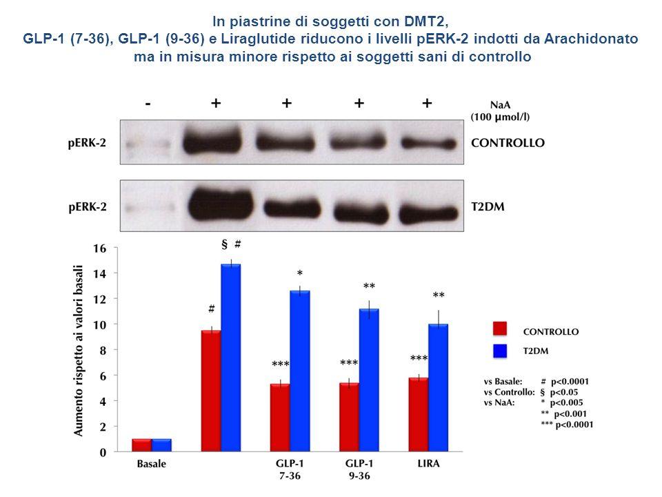In piastrine di soggetti con DMT2, GLP-1 (7-36), GLP-1 (9-36) e Liraglutide riducono i livelli pERK-2 indotti da Arachidonato ma in misura minore risp