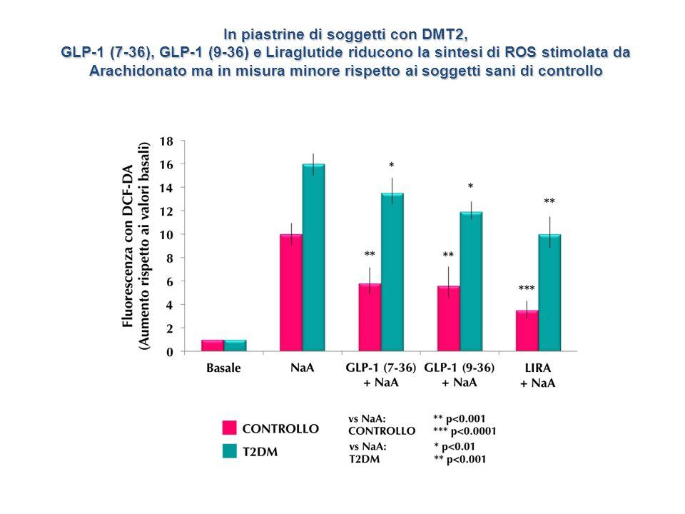 In piastrine di soggetti con DMT2, GLP-1 (7-36), GLP-1 (9-36) e Liraglutide riducono la sintesi di ROS stimolata da Arachidonato ma in misura minore r