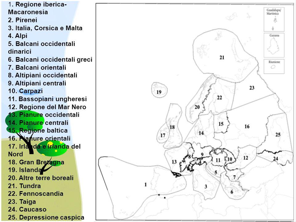 1. Regione iberica- Macaronesia 2. Pirenei 3. Italia, Corsica e Malta 4. Alpi 5. Balcani occidentali dinarici 6. Balcani occidentali greci 7. Balcani