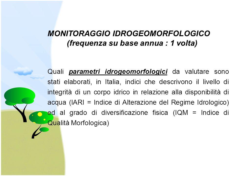 MONITORAGGIO IDROGEOMORFOLOGICO (frequenza su base annua : 1 volta) Quali parametri idrogeomorfologici da valutare sono stati elaborati, in Italia, in