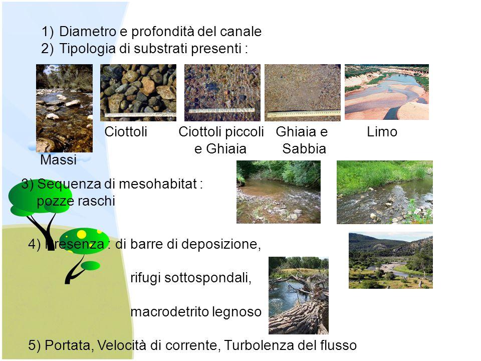 1)Diametro e profondità del canale 2)Tipologia di substrati presenti : Massi Ciottoli Ciottoli piccoli Ghiaia e Limo e Ghiaia Sabbia 3) Sequenza di me