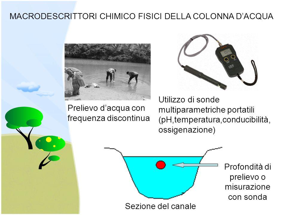 Sezione del canale Profondità di prelievo o misurazione con sonda Prelievo d'acqua con frequenza discontinua Utilizzo di sonde multiparametriche portatili (pH,temperatura,conducibilità, ossigenazione) MACRODESCRITTORI CHIMICO FISICI DELLA COLONNA D'ACQUA