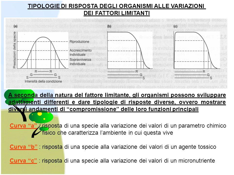 Il monitoraggio della qualità del suolo non ha ancora sviluppato delle procedure consolidate (affidabili) e sufficientemente standardizzate come nel caso dell'acqua e dell'aria.