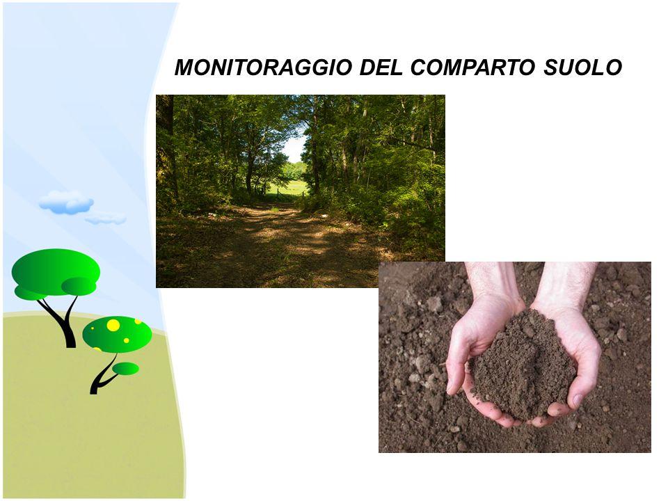 MONITORAGGIO DEL COMPARTO SUOLO