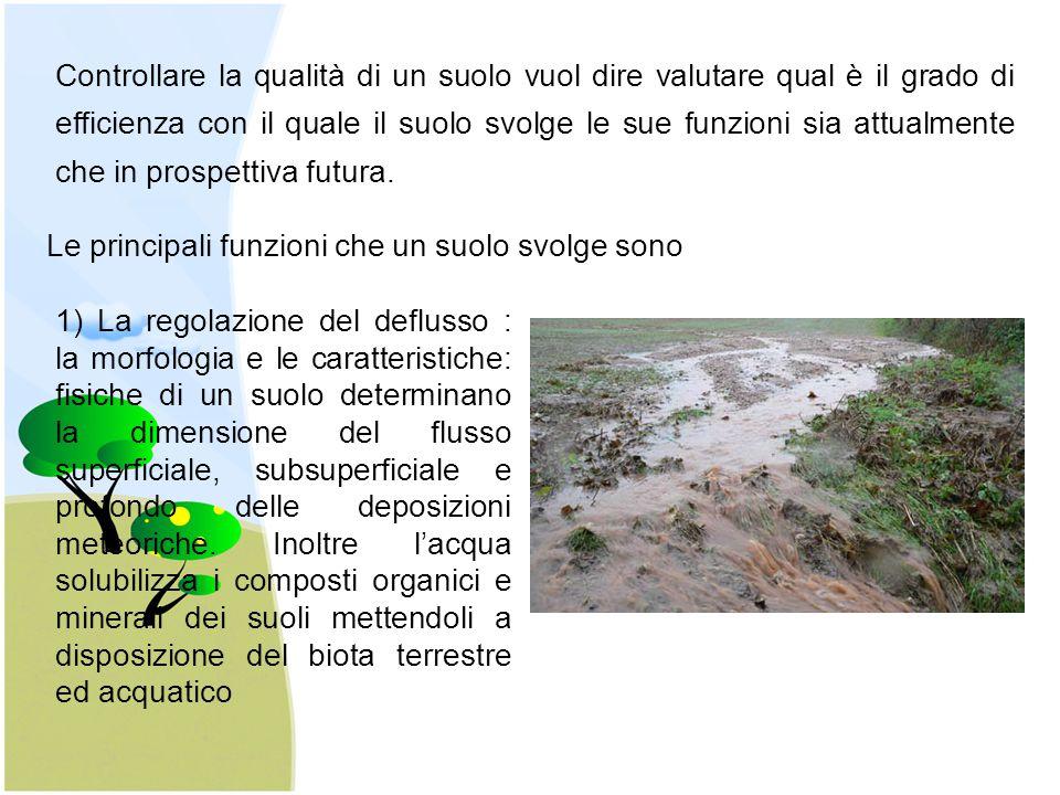 Controllare la qualità di un suolo vuol dire valutare qual è il grado di efficienza con il quale il suolo svolge le sue funzioni sia attualmente che i