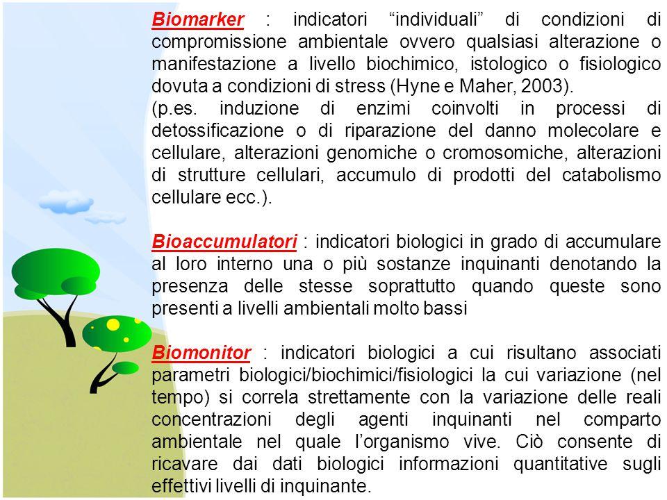 """Biomarker : indicatori """"individuali"""" di condizioni di compromissione ambientale ovvero qualsiasi alterazione o manifestazione a livello biochimico, is"""