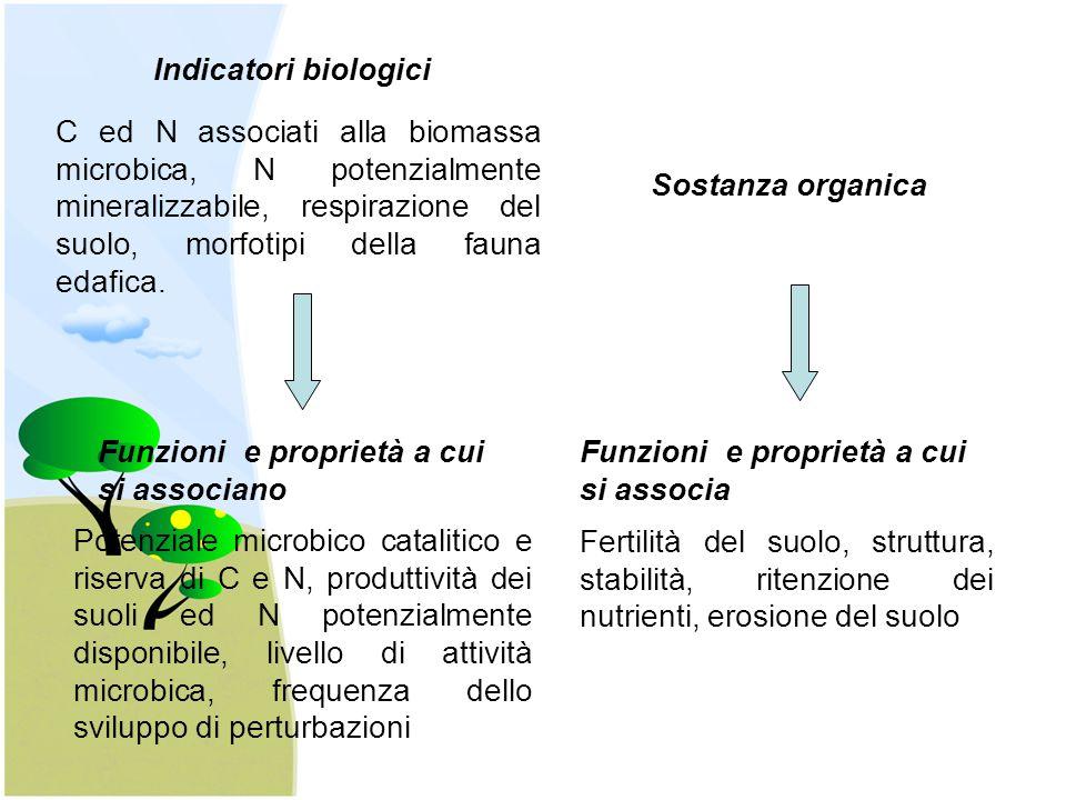 Indicatori biologici C ed N associati alla biomassa microbica, N potenzialmente mineralizzabile, respirazione del suolo, morfotipi della fauna edafica