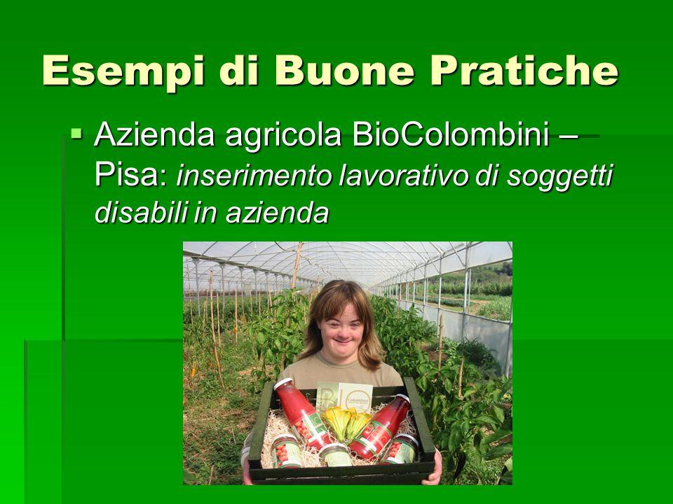 Esempi di Buone Pratiche  Azienda agricola BioColombini – Pisa : inserimento lavorativo di soggetti disabili in azienda