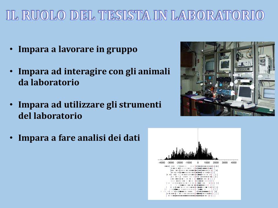 Impara a lavorare in gruppo Impara ad interagire con gli animali da laboratorio Impara ad utilizzare gli strumenti del laboratorio Impara a fare anali