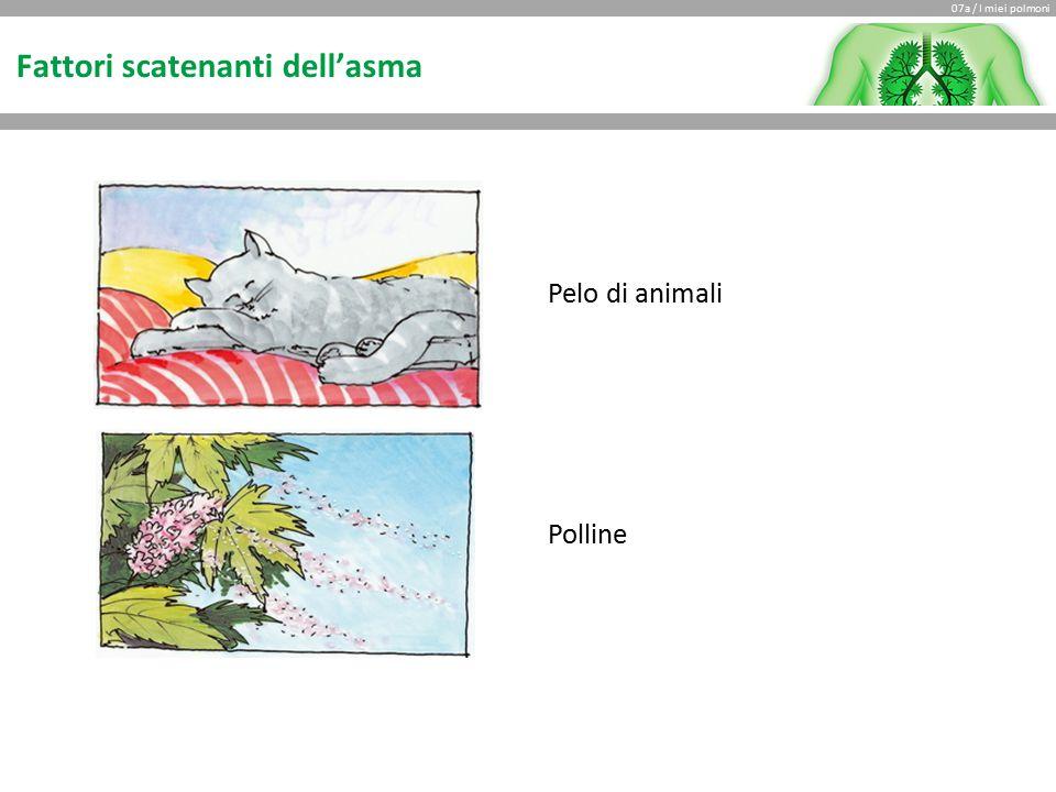 07a / I miei polmoni Fattori scatenanti dell'asma Pelo di animali Polline