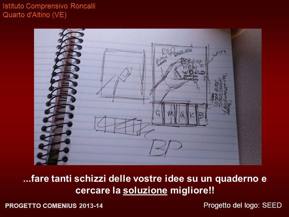 Istituto Comprensivo Roncalli Quarto d'Altino (VE) Progetto del logo: SEED PROGETTO COMENIUS 2013-14...fare tanti schizzi delle vostre idee su un quad