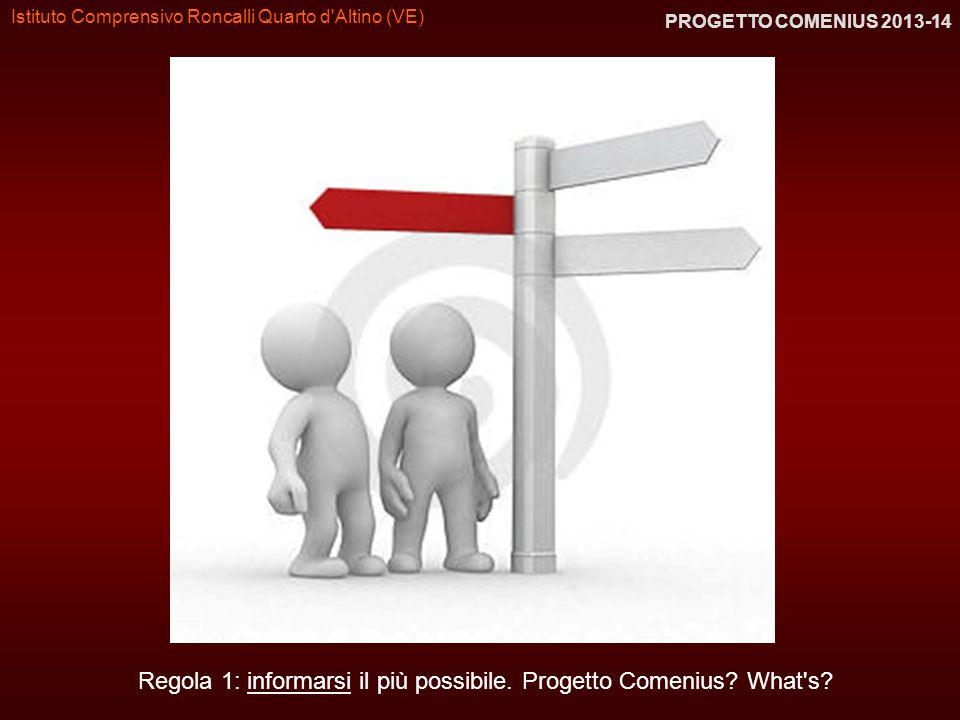 Istituto Comprensivo Roncalli Quarto d'Altino (VE) PROGETTO COMENIUS 2013-14 Regola 1: informarsi il più possibile. Progetto Comenius? What's?